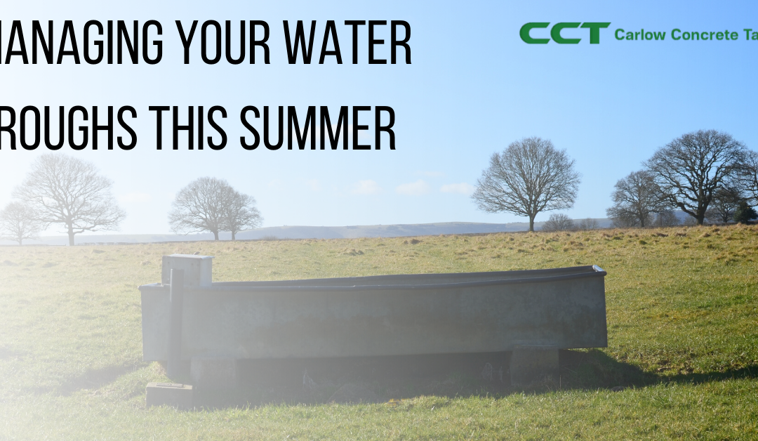 Managing Your Water Troughs This Summer