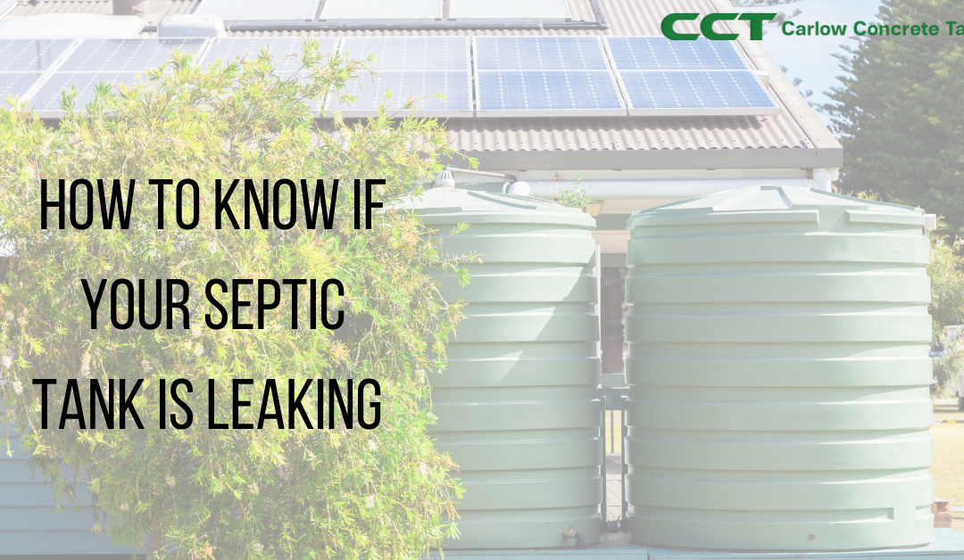 How to know if your Septic Tank is leaking